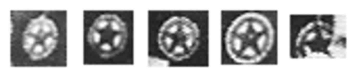 [Изображение: 1931-hpz-emblema-cmdfoto.png]