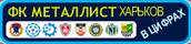 [Изображение: metal-stst_logo-4.png]